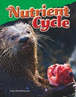 The Nutrient Cycle