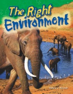 The Right Environment