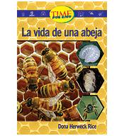 Upper Emergent: La vida de una abeja (A Bee's Life)