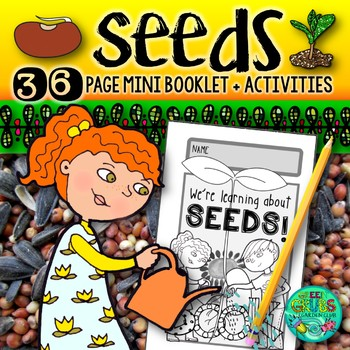 SEEDS! {Fun activities to support your learning about plant life cycles}