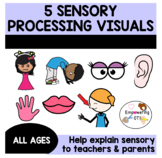 SENSORY PROCESSING 101: 5 visuals to help explain sensory processing