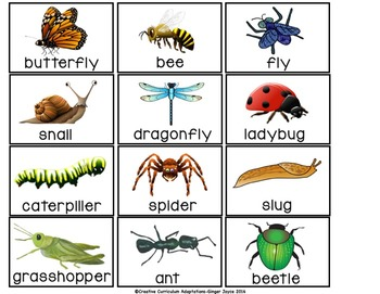 SIGHT WORD SENTENCE BUILDERS-BUGS (K-2/SPED/ELL)
