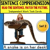 "SENTENCE COMPREHENSION Reading Task Cards ""Task Box Filler"" for Autism SET 2"