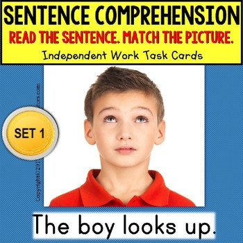 "SENTENCE COMPREHENSION Reading Task Cards ""Task Box Filler"" for Autism SET 1"