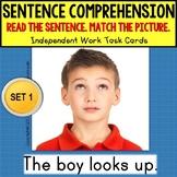 """SENTENCE COMPREHENSION Reading Task Cards """"Task Box Filler"""" for Autism SET 1"""