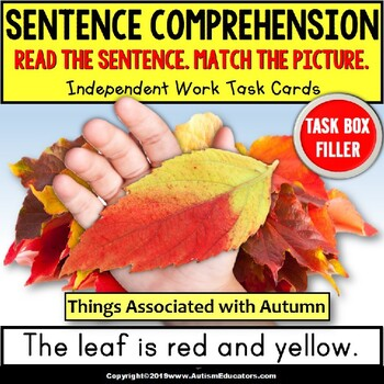 SENTENCE COMPREHENSION Things Associated with AUTUMN Task Cards TASK BOX FILLER