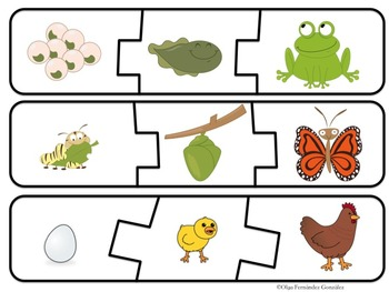 SEQUENCING LITERACY CENTER (CARDS, ANCHOR CHARTS, WORKSHEETS, AND FLASHCARDS)