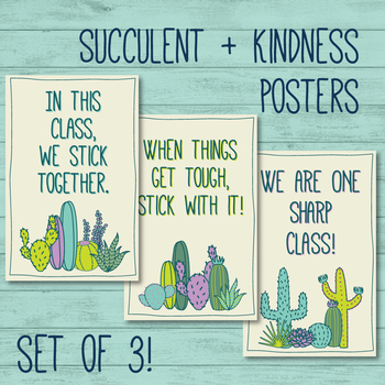 SET OF 3 Kindness / Succulents: Motivation Educational / Counselor / Guidance /