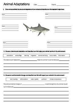 shark adaptations worksheet year 5 science acssu043 tpt. Black Bedroom Furniture Sets. Home Design Ideas