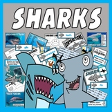 SHARKS TOPIC RESOURCES SCIENCE ANIMALS EYFS KS 1-2 SEALIFE
