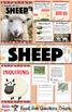All About Sheep Nonfiction Unit