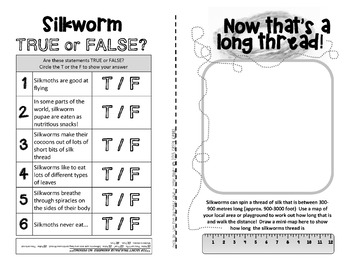 SILKWORMS - Fuzzy moths and silky-worms! {Fun and facts booklet}