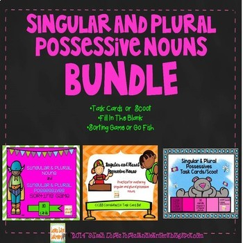 SINGULAR, PLURAL & POSSESSIVE NOUNS 3 CARD SET BUNDLE