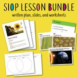SIOP Lesson Bundle Photosynthesis Cellular Respiration Pla