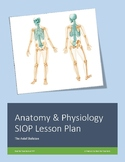 SIOP Lesson Plan: The Axial Skeleton