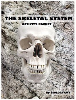 SKELETAL SYSTEM, Activity Packet