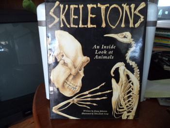 SKELETONS    ISBN 0-89577-604-9