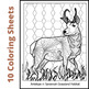 SL - Animal Habitat Coloring Sheets for Elementary and Mid