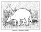 SL - Animal Habitat Grasslands - Aardvark