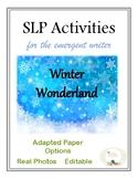 SLP Activities for the Emerging Writer ~ Winter Wonderland