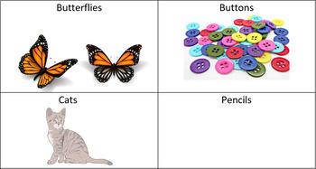 SLP Activity: Using Quantitative Words