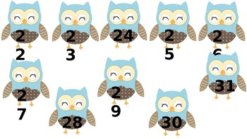 SMALL numbered owls