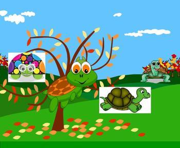 SMART Board: Race Turtles: English: Vocabulary Memoir Terms: Smartboard