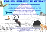 SMARTBoard Polar/Arctic Region Animals Research Writing Project & Art Extenstion