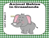 SMARTboard Animal Babies in Grasslands Unit 2 Week 3