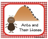 SMARTboard Ants and Their Homes Unit 6 Week 6