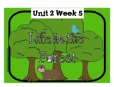 "Reading Street ""Life in the Forest"" SMARTboard First Grade Unit 2 Week 5"