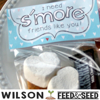 SMORES Valentine bag toppers for Teachers Students *We need s'more Teachers*