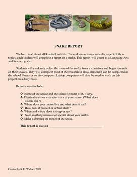 SNAKE REPORT