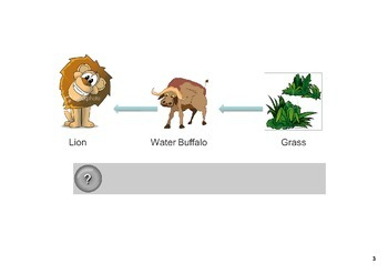 SNC1D Food chains and food webs SMART notebook file