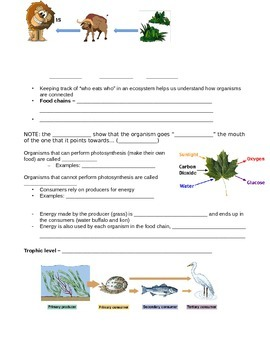 SNC1D Food chains and food webs student handout