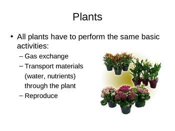 SNC2D Plants PowerPoint