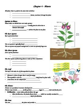 SNC2D Plants student handout