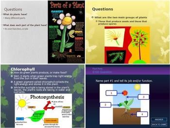 SOL 4.4 All About Plants PowerPoints Bundle