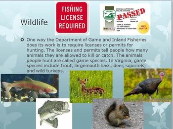 SOL 4.9: Virginia's Animals