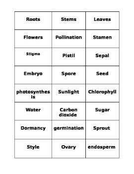 SOL 4.4 Plants Concept Cards