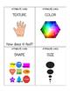 SOL Aligned Classification Lesson 21st Century Skills
