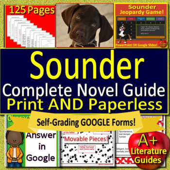 Sounder Novel Study Print AND Google Paperless with Self-Grading Tests