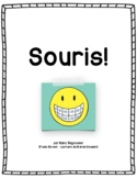 SOURIS! Étude Roman Graphique Full SMILE! Novel Study FRENCH - Raina Telegemier