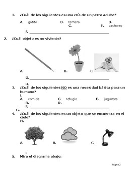 SPANISH * First Grade Science TEKS End-of-Year Assessment * SPANISH