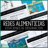 SPANISH Food Webs Observation Stations {Printable and Digital}