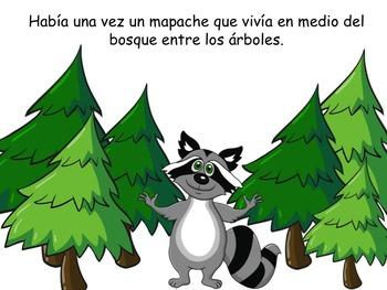 SPANISH Forest Animals Raccoon ELL