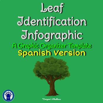 SPANISH Leaf Identification Infographic Template Graphic Organizer