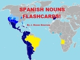 SPANISH NOUNS FLASHCARDS! (Over 300 photos with text)