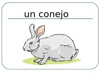 SPANISH - PPT Flashcards - Animals