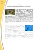 SPANISH: PRETERITE (2 PARAGRAPHS) - CONJUGATE THE VERBS IN